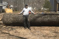 Lynchburg-VA-tree-cutting